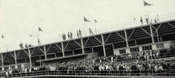 1966 Razorback